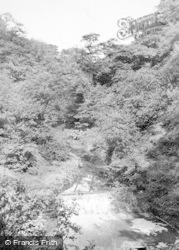 Bamford, Carr Woods c.1955