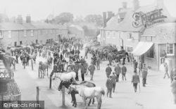 Horse Fair 1904, Bampton