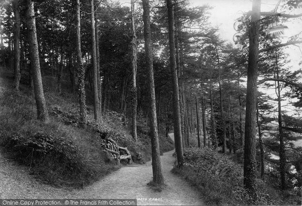 Photo of Bangor, Woods 1894