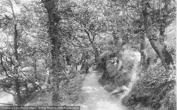 Photo of Bangor, Woods 1906