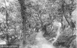 Bangor, Woods 1906