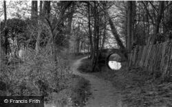 Barcombe, River Path c.1955