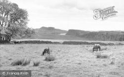 Bardon Mill, Winshield Crag c.1955