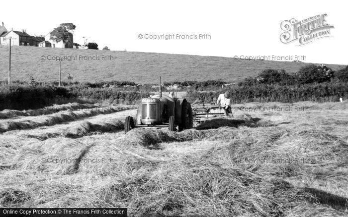 Photo of Bardsea, Haymaking c.1955