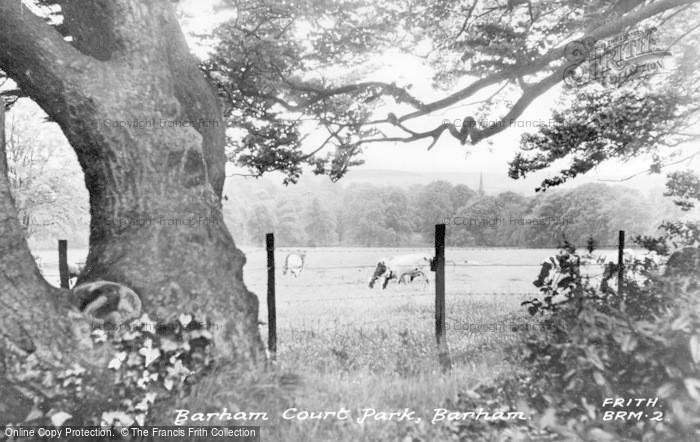 Photo of Barham, Barham Court Park c.1955