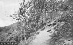 Barmouth, On Mountain Path 1921