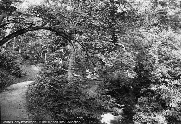 Barnard Castle, Flatswood Footbridge 1892