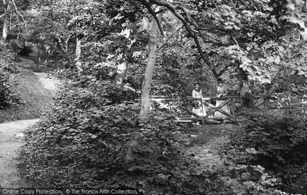 Barnard Castle, Ladies, Flatswood Footbridge 1892
