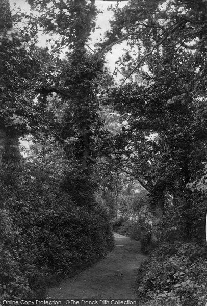 Barnstaple, Anchor Wood, Lovers' Walk 1890