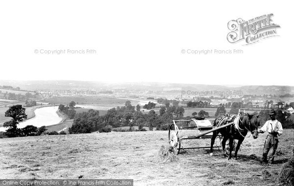 Barnstaple, Haymaking 1890