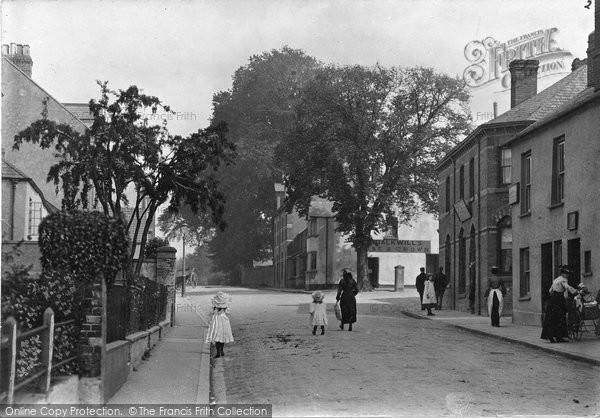 Barnstaple, Hollow, Tree, Newport c.1890