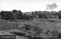 Approach To Village c.1955, Barrasford
