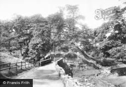 Barrow Bridge, The Sixty Three Steps 1903