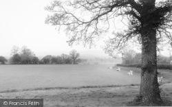 Barrow Upon Soar, Beacon Field c.1955