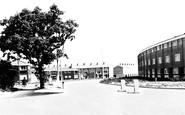 Basildon, Ghyllgrove c1960