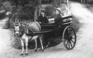 Beare Green, The Donkey Cart 1909