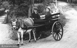 The Donkey Cart 1909, Beare Green