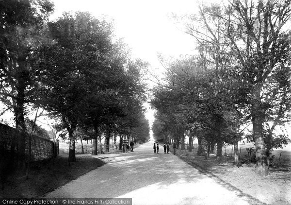 Beccles, The Avenue 1894