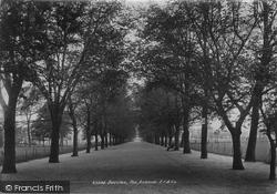 Beccles, The Avenue 1900