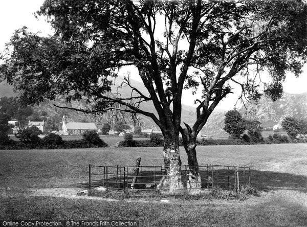 Beddgelert, Gelert's Grave c.1900