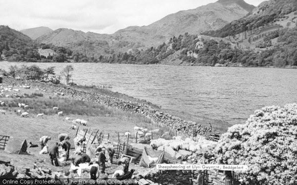 Photo of Beddgelert, Sheep Shearing At Llyn Gwynant c.1960