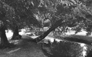 Beddington, The River Wandle 1953