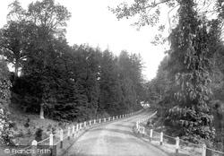 Park, The Drive 1902, Bedgebury