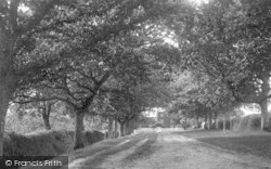Beer, Bovey Avenue 1901