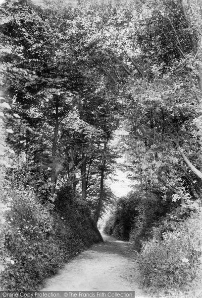 Beer, Path To Golf Links 1907