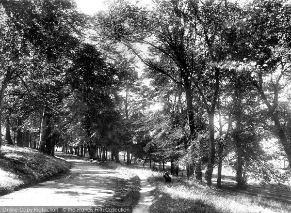 Photo of Belfast, View In Ormeau Park 1897