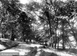 Belfast, View In Ormeau Park 1897
