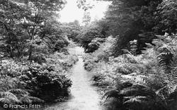 Belsay, Garden Walk c.1955