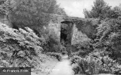 Quarry Gardens c.1955, Belsay
