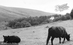 Belstone, The Skaigh Valley c.1960