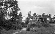 Bepton, The Shamrock Inn 1921