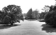 Berkhamsted, Queen Victoria's Oak, Ashridge Gardens c.1960
