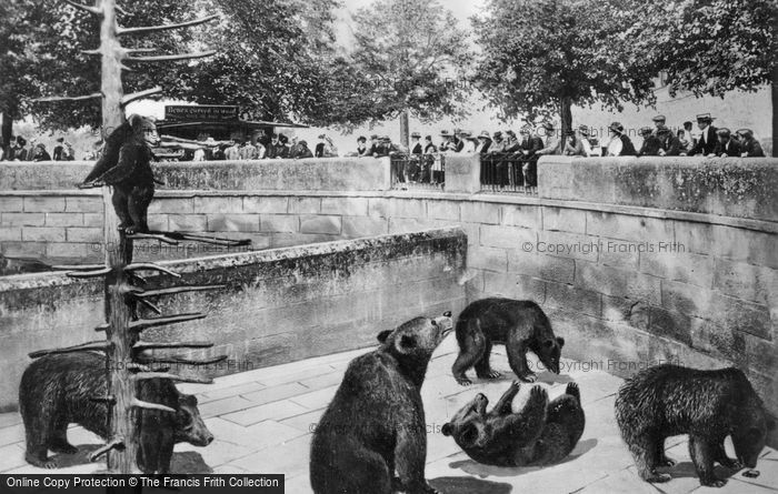 Photo of Berne, The Bear Pits c.1935