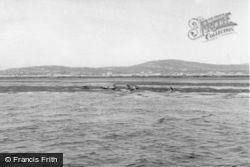 Berneray, Seals Off The Island 1963