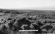 Berrow, The Beach And Sand Dunes c.1955
