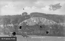 Clump From Football Field 1900, Betchworth
