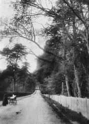 Station Road 1907, Betchworth