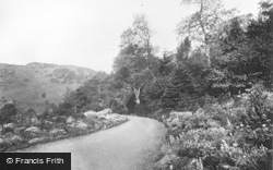 Betws Garmon, The Drive From The Rock Garden, Plas Y Nant c.1930