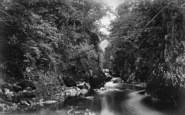 Betws-Y-Coed, Fairy Glen c.1876