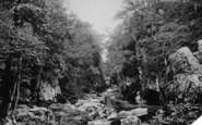 Betws-Y-Coed, Fairy Glen c.1880