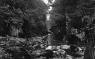 Betws-Y-Coed, Fairy Glen c.1935