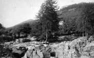 Betws-Y-Coed, Fir Tree Island 1891