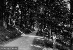 Llwynowen Woods 1933, Beulah