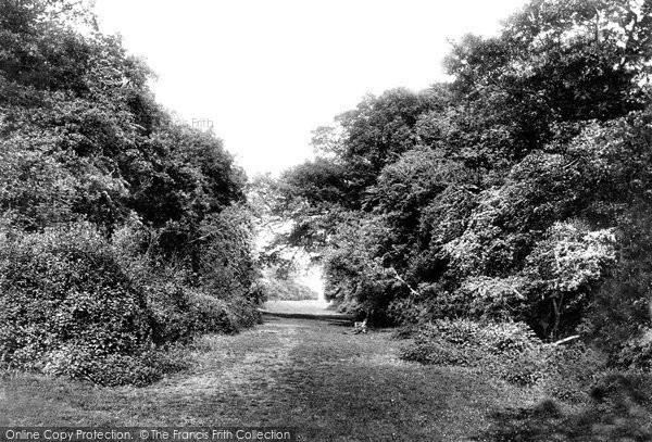 Beverley, Burton Bushes, Westwood 1900