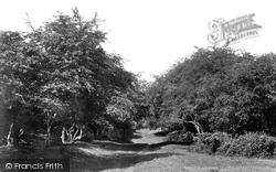 Westwood, Newbegin Pits 1900, Beverley