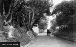 Bexhill, Upper Sea Road 1903